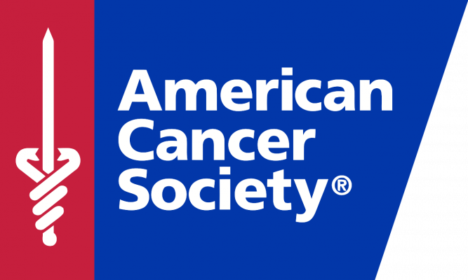 American Cancer Society Accessible Web and Alternative Formats Press Release