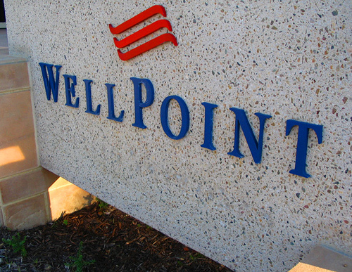 WellPoint Accessible Information Agreement