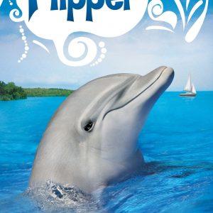 Flipper, a dolphin